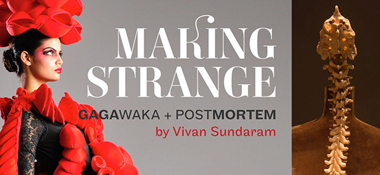 Making Strange: Gagawaka + Postmortem by Vivan Sundaram